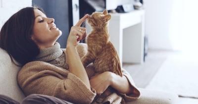 7 signes qui permettent de mieux comprendre son chat