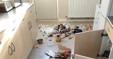 Il rentre chez lui et pense qu'il a été cambriolé car sa cuisine est saccagée : un détail le fait exploser de rire