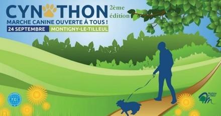 Participez au Cynothon, la marche canine ouverte à tous !