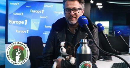 David Abiker (Europe 1) : « avoir un chien c'est comme un shot de cocanine en continu »