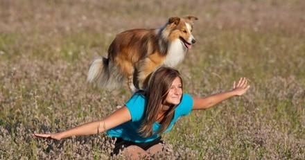 Et si vous essayiez une nouvelle activité avec votre chien ?