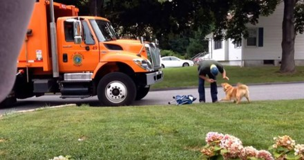 Ne sachant pas qu'il est filmé, cet éboueur révèle sa vraie nature face à un chien (Vidéo)