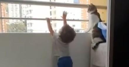 Le bébé se penche par le balcon : la réaction de son chat a stupéfait des milliers de personnes