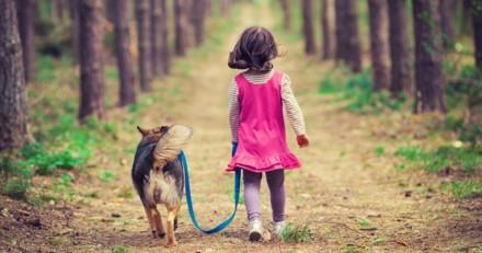 Une fillette d'un an et demi part de chez elle pour « promener son chien »