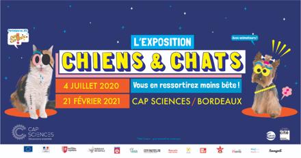 """Chiens et Chats : l'exposition pour toute la famille qui va vous rendre """"moins bête"""" !"""