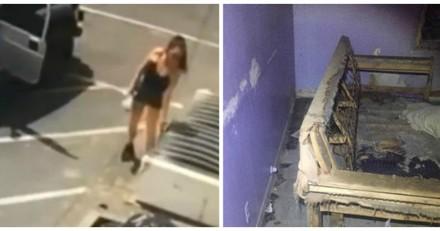 Les policiers arrêtent une femme qui a balancé des chiots à la poubelle, chez elle ils découvrent l'horreur