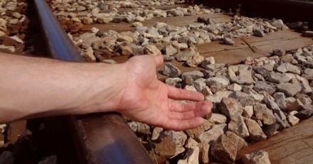 Une femme s'effondre sur les rails alors que le train arrive : son Pitbull n'hésite pas et en paie le prix