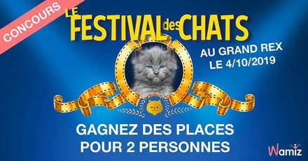 Le Festival des Chats : avez-vous gagné des invitations ?