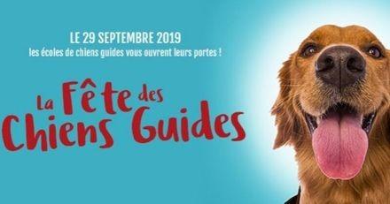Fête des Chiens Guides : découvrez ces animaux extraordinaires le 29 septembre !