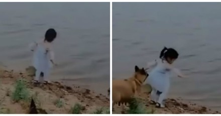 Une fillette court derrière son ballon : un chien se met à la poursuivre, la suite fait pleurer le monde entier