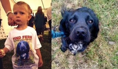 """A 4 ans, il écrit sa toute première lettre, aux """"méchants hommes"""" qui ont volé son chien"""