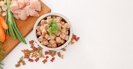 Quelle est la meilleure alimentation humide sans céréales pour chat en 2021 ?