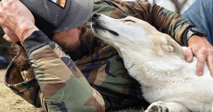 L'incroyable aventure d'un soldat de la Marine : il sauve un chien en pleine guerre