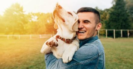 La garde de chien : source de bien-être ?