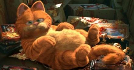 Elle cherche un chat orange pour ses fils fans de Garfield, la réaction des Internautes est exceptionnelle