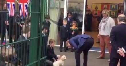 Le prince Harry caresse un chien trop mignon lors d'une sortie dans une école primaire à Londres