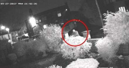 Filmé en train de balancer des chiots dans un jardin, il n'avait pas prévu la suite