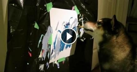 Ce chien artiste-peintre est au moins aussi talentueux que Picasso !