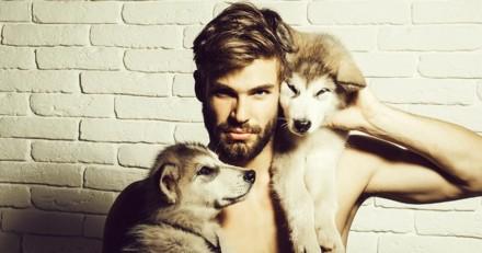 Il y aurait plus de microbes dans la barbe des hommes que dans la fourrure des chiens !