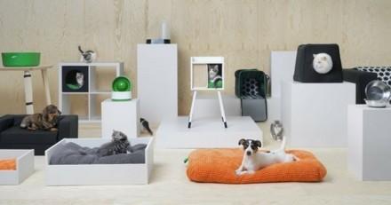 Ikea sort une collection pour chats et chiens !