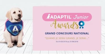 Concours : Adaptil Juniors Awards met votre chiot à l'honneur