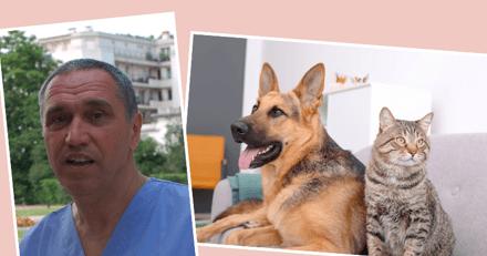 Interview du Dr Moissonnier : un spécialiste de l'arthrose revient sur les idées reçues liées à la maladie