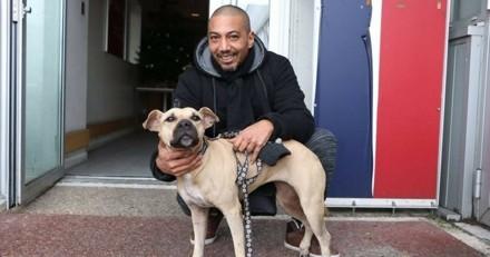 3 mois après l'ouragan Irma, il retrouve sa chienne grâce à la SPA (Vidéo)