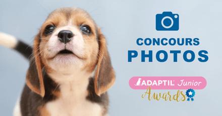 Concours photos du chiot le plus mignon avec Adaptil Junior Awards