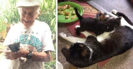 En secret, un homme âgé devient le grand-père adoptif d'une portée de chatons !