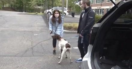 La journaliste couvre un sujet de dognapping en direct à la TV : elle tourne la tête et a un électrochoc