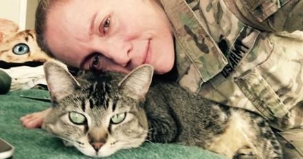 Cette chatte voyage partout avec le soldat qui l'a adoptée !