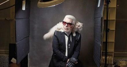 Choupette : la chatte de Karl Lagerfeld est la chatte « la plus riche du monde »