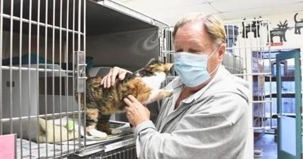Pluies torrentielles : une femme et son chat périssent dans les débris, 3 ans après un miracle se produit !