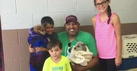Le chien de la famille disparaît soudainement : au bout de 7 ans ils font une étrange découverte
