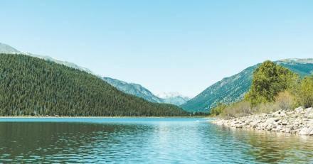 Une dame de 74 ans promène son chien quand une forme surgit du lac : son réflexe va tout changer