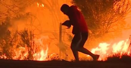 En plein incendie, il affronte les flammes pour sauver un lapin (Vidéo du jour)