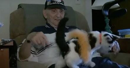 Un retraité tombe dans la salle de bains : son chaton s'approche et lui sauve la vie (Vidéo)