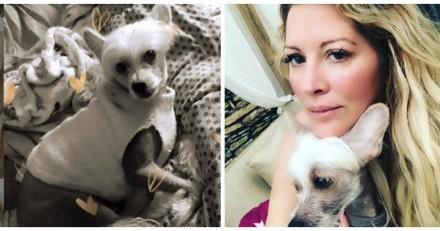 Accusée de maltraiter son chien, Loana répond !