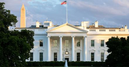 Joe Biden : pourquoi son chat se fait attendre à la Maison-Blanche ?