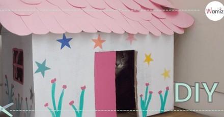 DIY : Comment faire une maison pour chat avec une boîte en carton ? (Tuto Vidéo)
