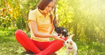 14 preuves que les animaux sont les bébés de leur maîtresse (Photos)