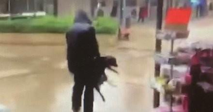 Il jette violemment son chien à terre dans la rue, la vidéo tourne sur Twitter et le maire saisit la Justice