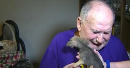Un couple de personnes âgées reçoit un chiot, ils se mettent à pleurer pour une raison bouleversante (Vidéo)