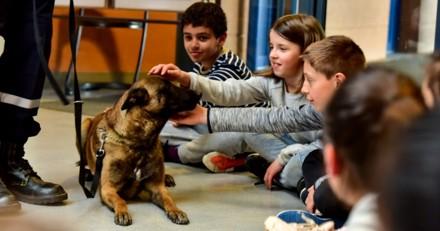 L'école de Villejust sensibilise les enfants aux morsures canines