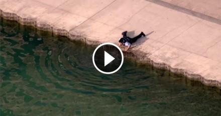 Héroïque ! Un policier sauve un chien de la noyade