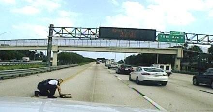 Un policier voit un chien renversé au milieu de l'autoroute : il court vers lui et panique en voyant le toutou