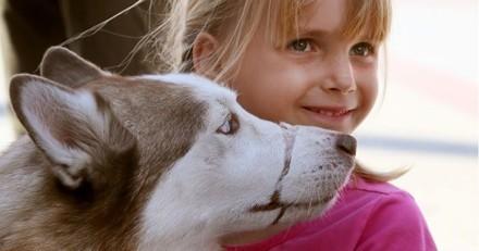 Ancienne victime, ce chien aide les enfants maltraités à témoigner contre leur bourreau