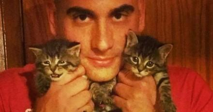 Il nourrit un chat errant et finit par en sauver plus de 1000