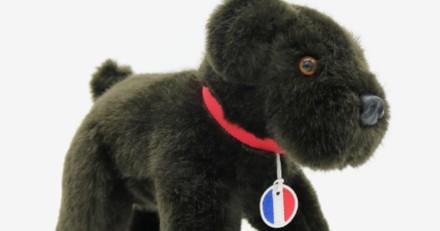 Nemo, le chien d'Emmanuel Macron, a désormais une peluche à son effigie !