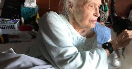 Une mamie de 101 ans perd son chat adoré : sa famille a une idée géniale pour l'aider à surmonter sa peine